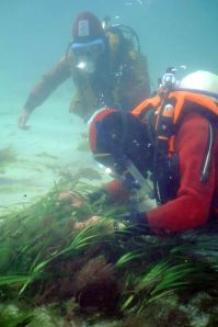 CCC divers, Isles of Scilly
