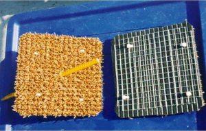 Sandown IoW 2002_Carpet tile_1